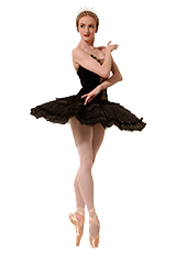 How A Pointe Shoe Works Gaynor Minden