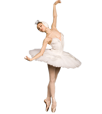 <p>Learn <strong>All About Pointe</strong></p>