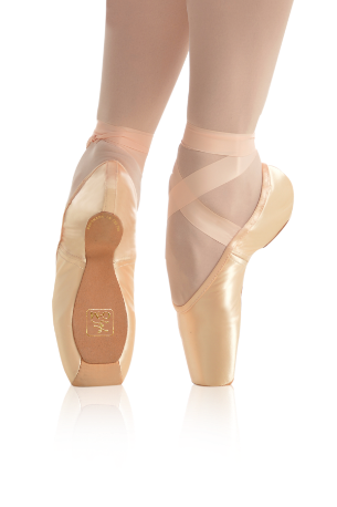 pointe shoes gaynor minden