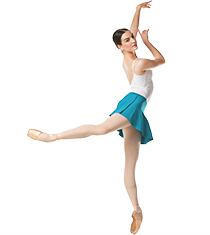<p>Shop <strong>Pointe Shoes</strong></p>